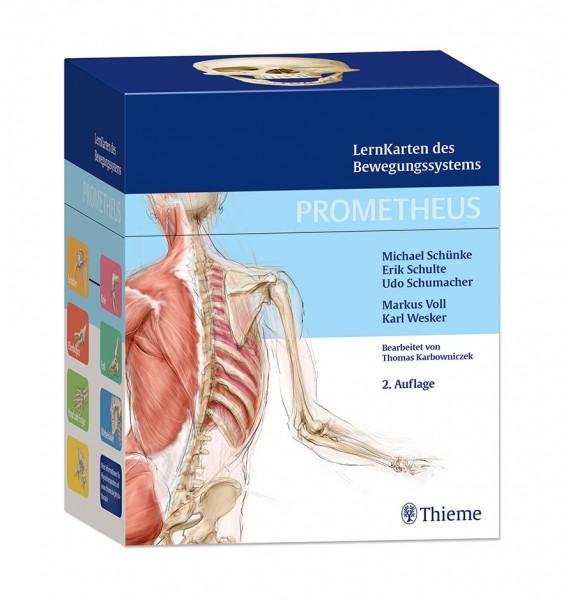 Prometheus - LernKarten des Bewegungssystems