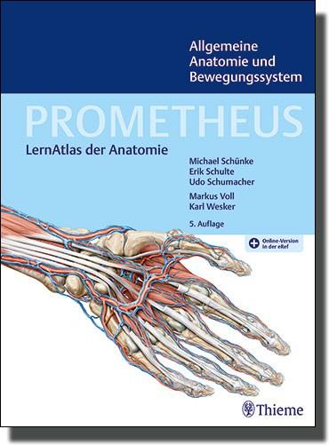 Prometheus - Allgemeine Anatomie und Bewegungssystem