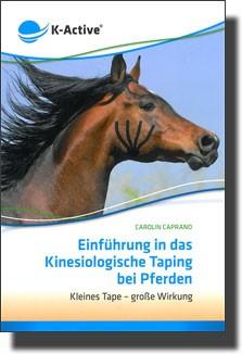 Einführung in das Kinesiologische Taping bei Pferden